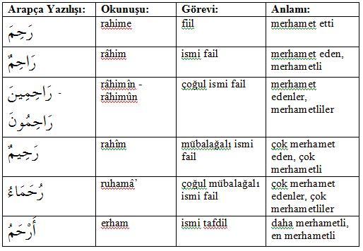 Fiilin İngilizce olması için nasıl kullanılır